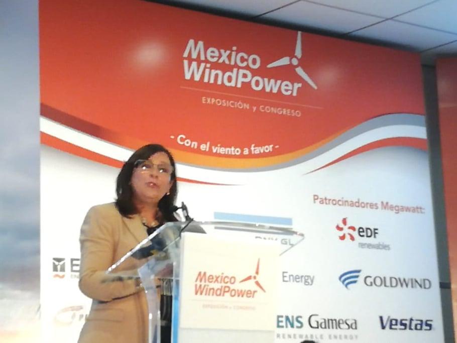 Energy & Commerce | México avanza en el camino hacia las energías renovables: Rocío Nahle