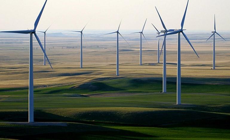 Elecnor construirá nuevo parque eólico en BC Sur