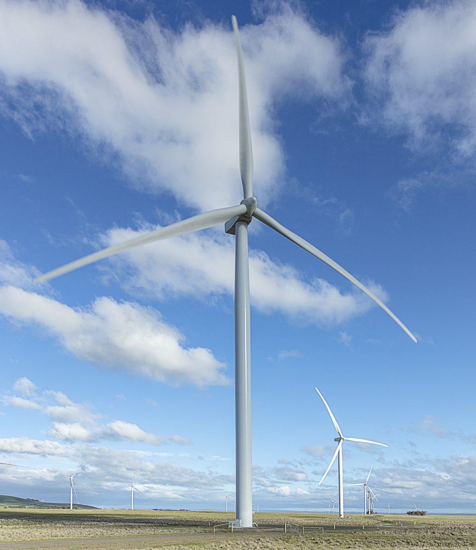 ACCIONA brindará 100 GWh de energía limpia a Telefónica por 10 años