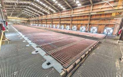 Grupo México mantiene sus metas de extracción de cobre.