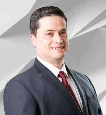 Red eléctrica, Luis Francisco Flores, Hitachi ABB