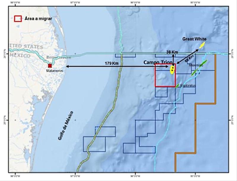 BHP espera concluir adquisición de sísmica en Trion este trimestre