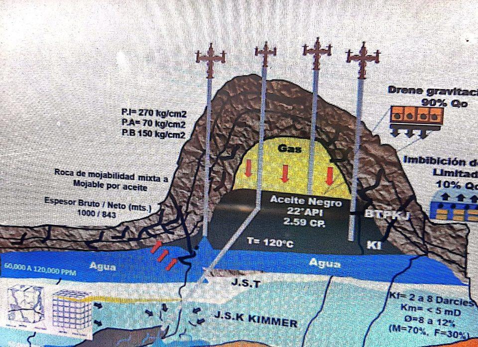 Control selectivo de agua en yacimientos naturalmente fracturados