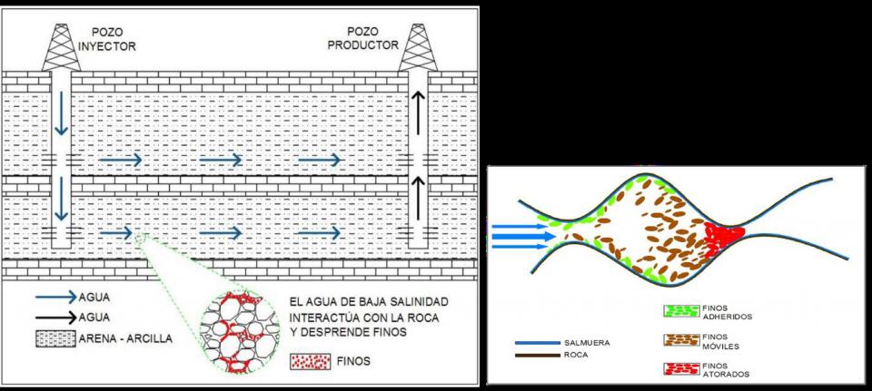 Modelo de inyección de Agua de Baja Salinidad