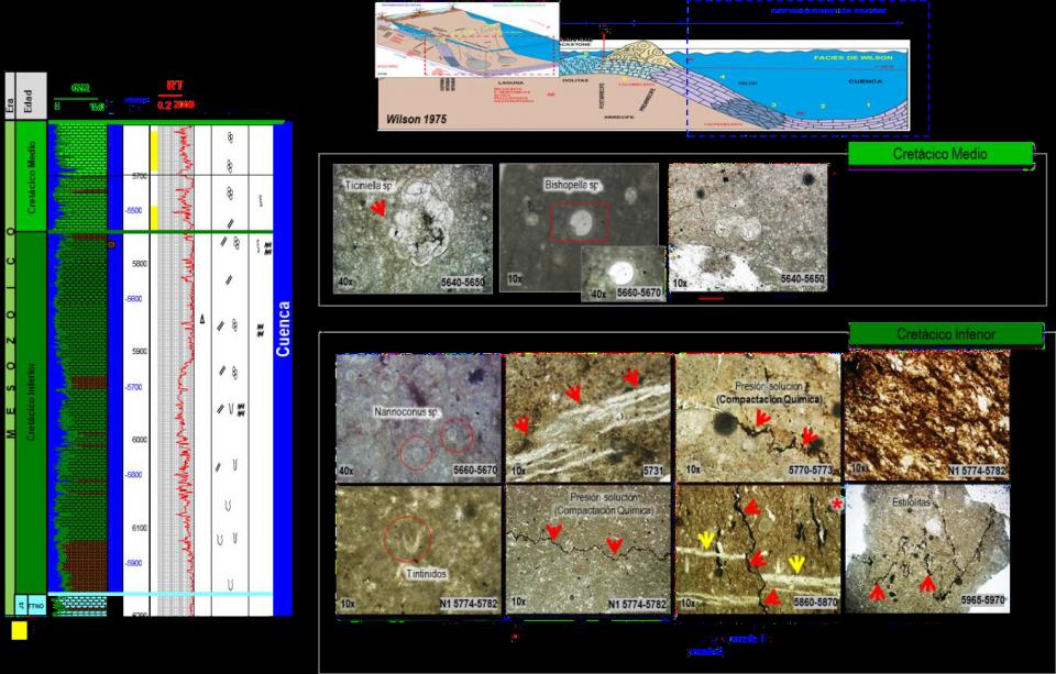 Dolomitización en carbonatos y la relación con su potencial almacenador: caso de estudio aplicado a un yacimiento de la región Sur.